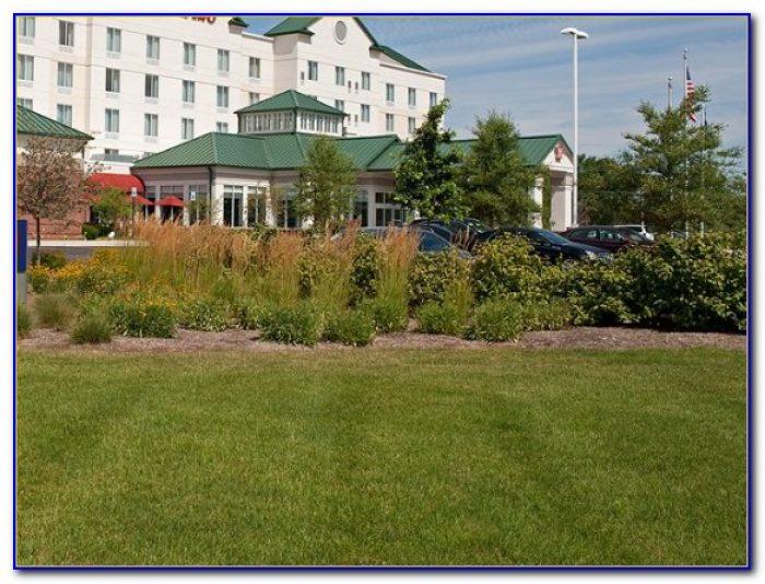 Hilton Garden Inn Indianapolis Airport Indianapolis In 46241 Garden Home Design Ideas