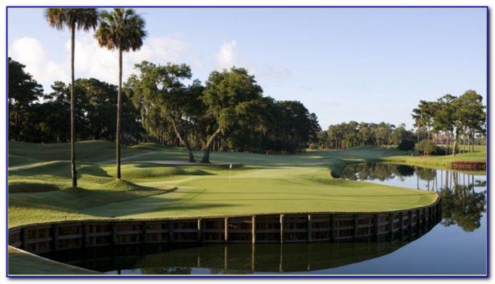 Hilton Garden Inn Jacksonville Fl Kings Ave Garden Home Design Ideas 4rdbvjqdy254974