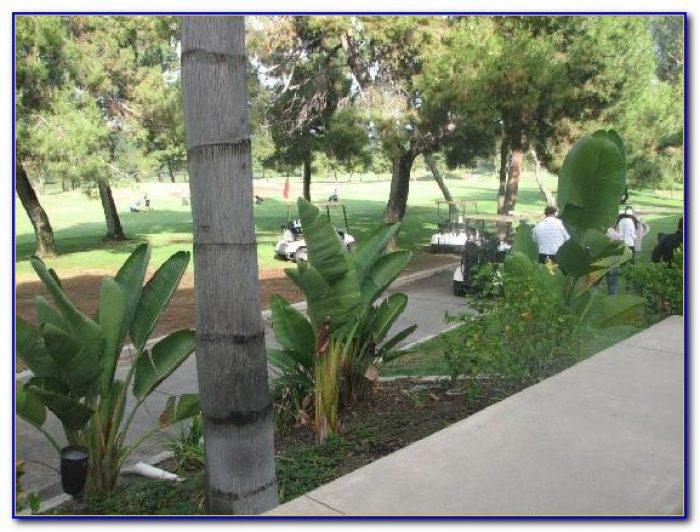 Hilton Garden Inn Montebello California Garden Home Design Ideas Wlnxeprd5252943