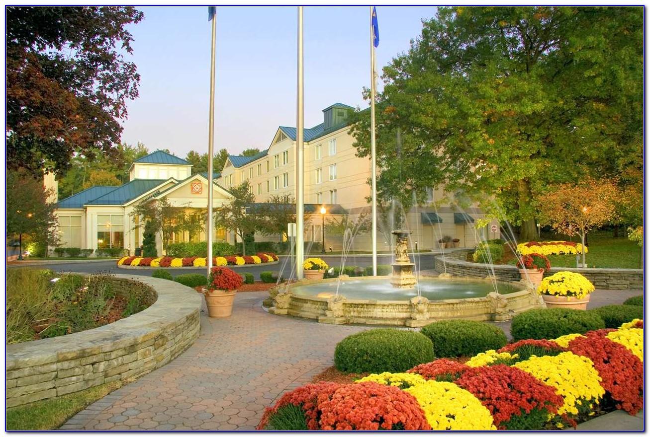 Hilton garden inn saratoga springs tripadvisor garden - Hilton garden inn saratoga springs ny ...
