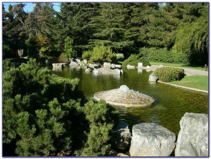 San antonio japanese tea garden admission fee garden - Japanese tea garden san antonio restaurant ...
