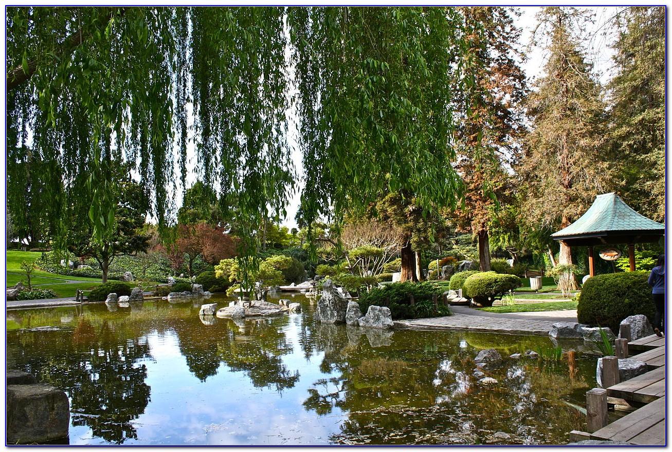 Japanese Friendship Garden San Jose Wedding Download Page