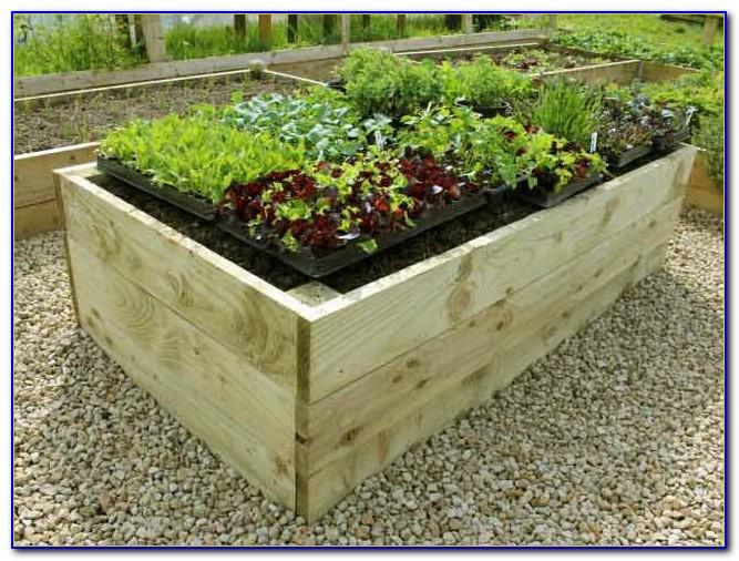 Raised Bed Garden Kit Costco