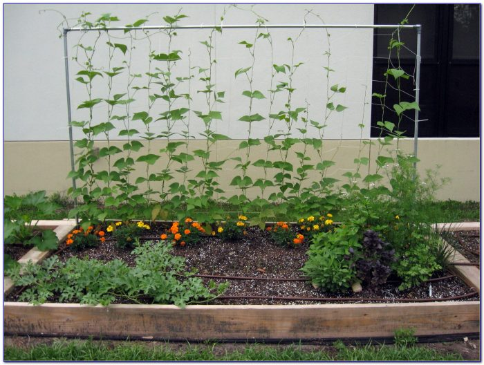 Raised Garden Beds Plans Vegetables