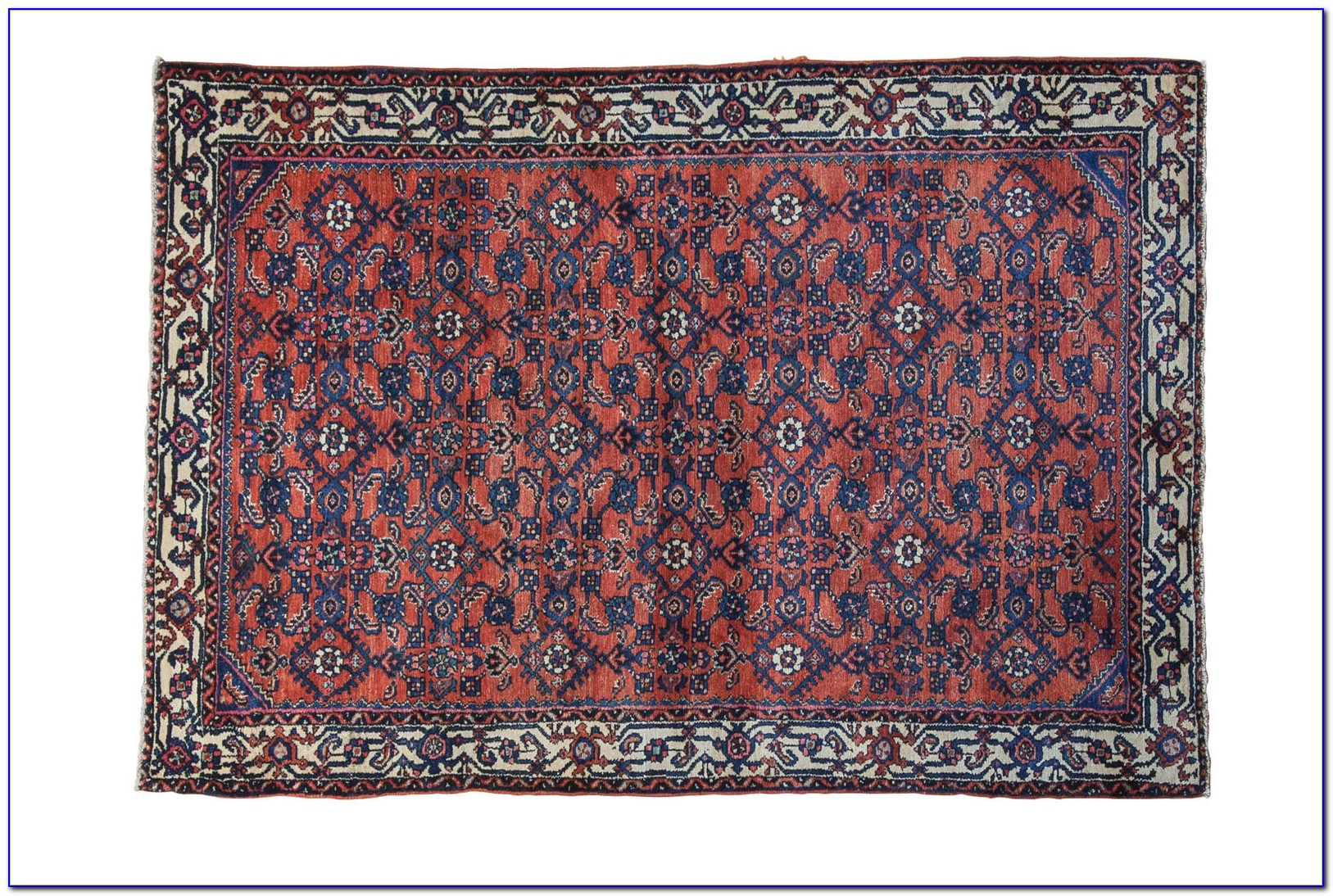 5x5 Area Rug Square Download Page Home Design Ideas