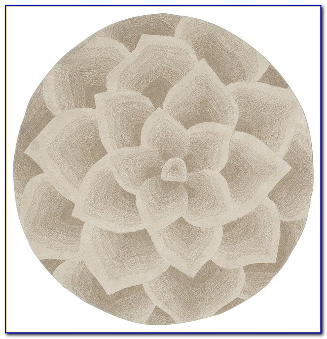 Rose Tufted Rug Pier 1