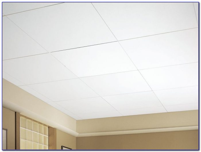 Armstrong Bioguard Acoustic Ceiling Tiles