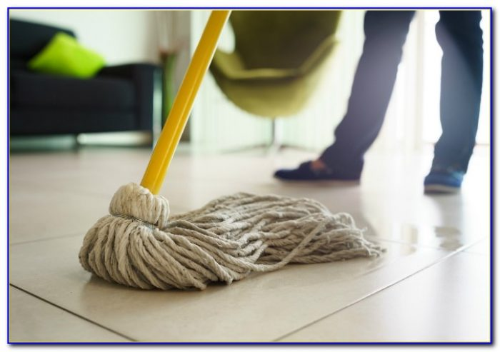 Best Steam Mop For Vinyl Plank Floors Flooring Home