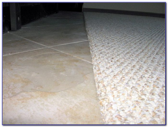 Carpet To Tile Transition Molding