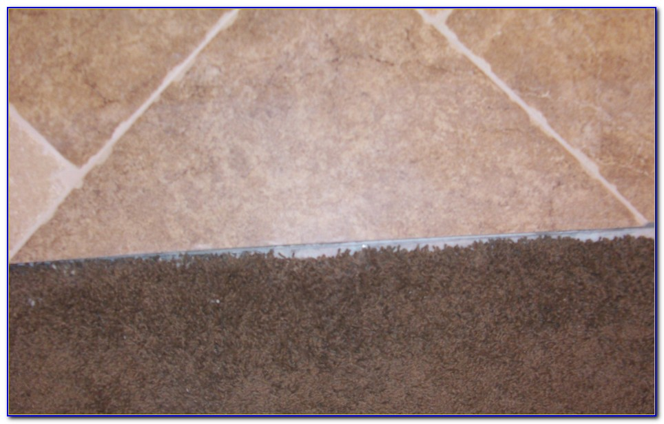 Carpet To Tile Transition Strip Installation
