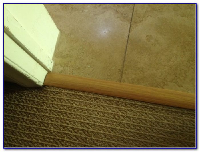Carpet To Tile Transition Strip Menards