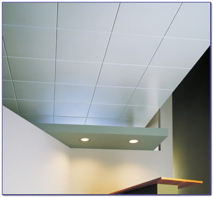 Armstrong Commercial Washable Ceiling Tiles - Tiles : Home ...