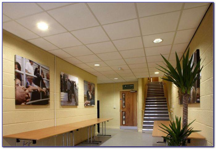 Decorative Drop Ceiling Panels