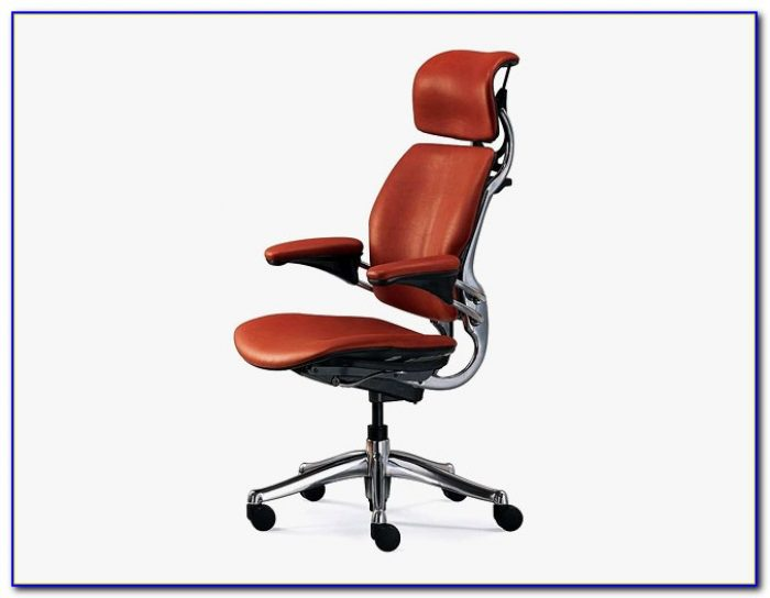 Ergonomic Office Chairs For Back Pain Chairs Home