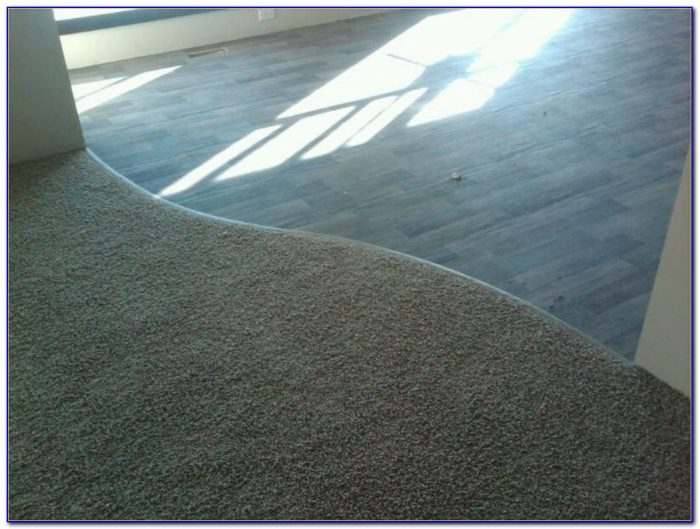 Carpet Transition Strip To Tile
