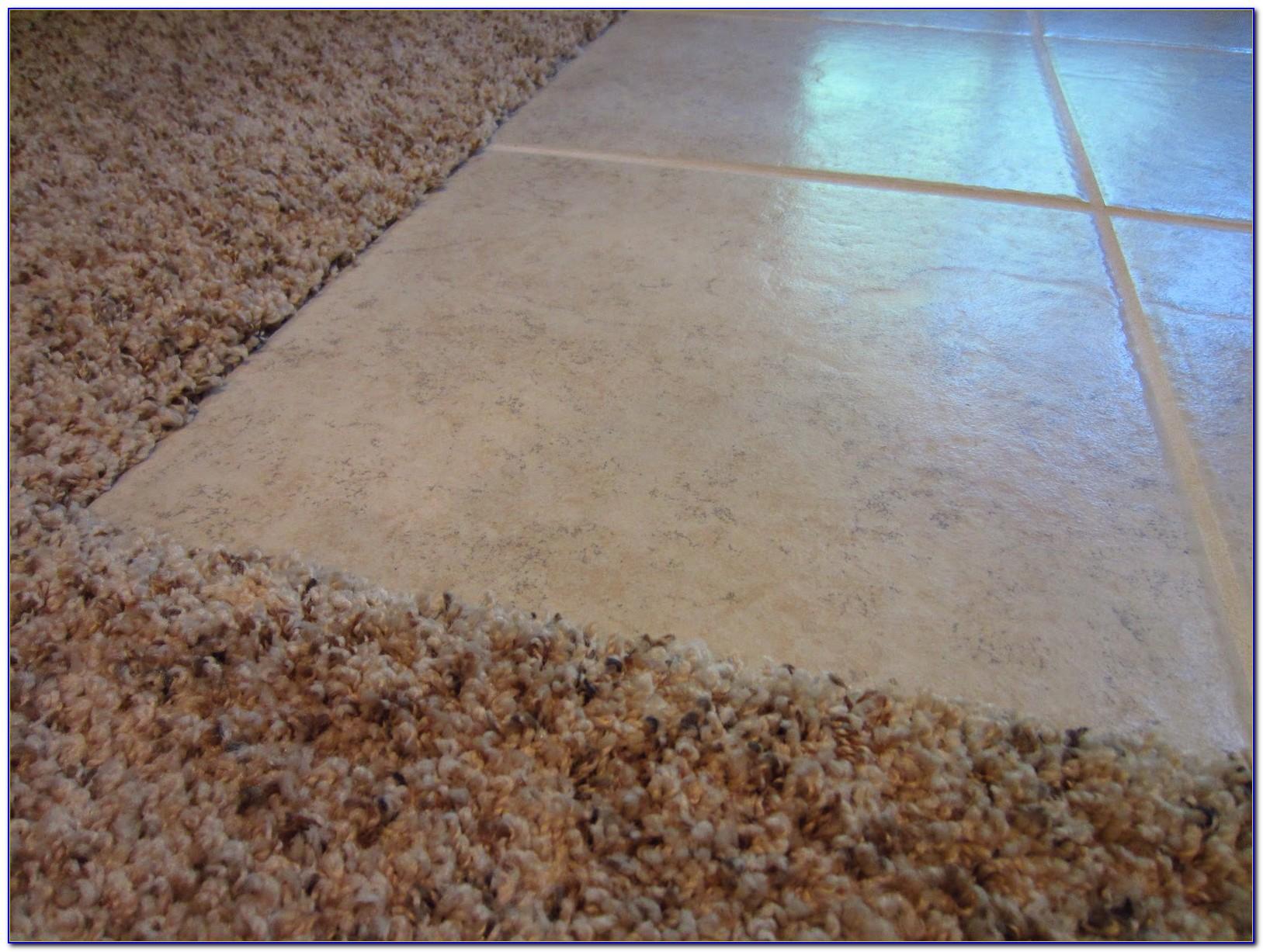 Carpet Transition To Tile Tiles Home Design Ideas