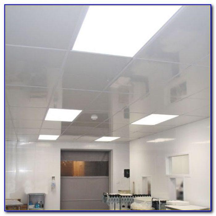 Clean Room Mylar Ceiling Tiles Tiles Home Design Ideas