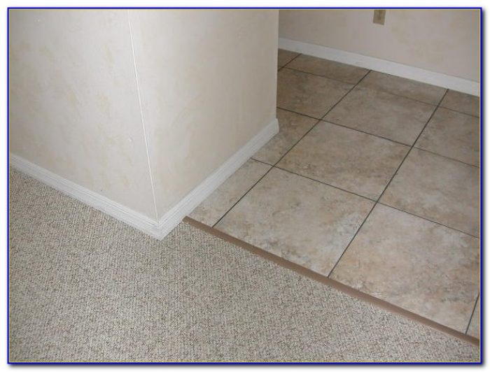Schluter Tile To Carpet Transition Strip