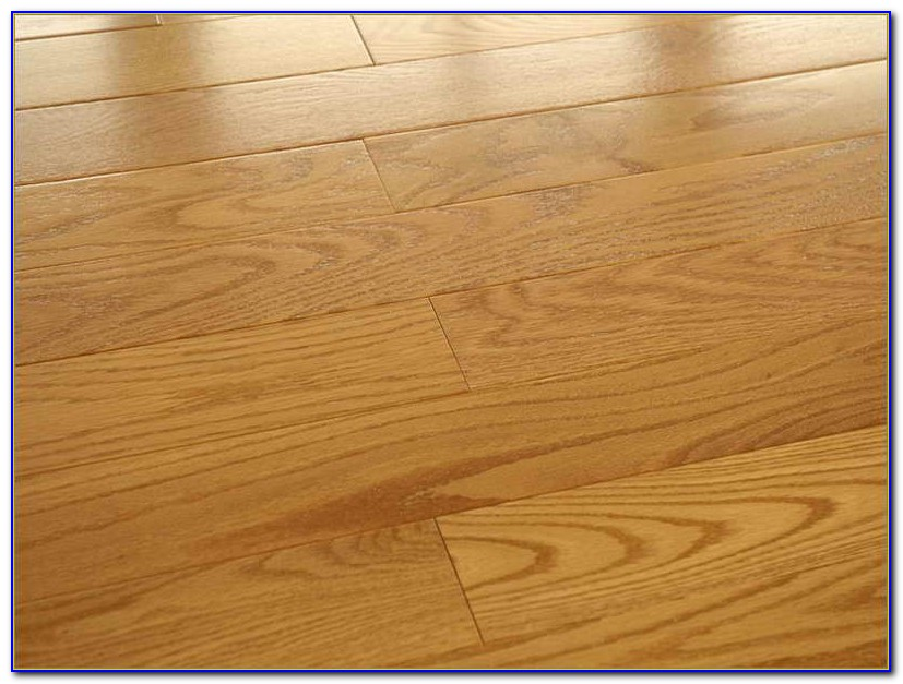 Best finish for hardwood floors with dogs flooring for Hardwood floors good for dogs