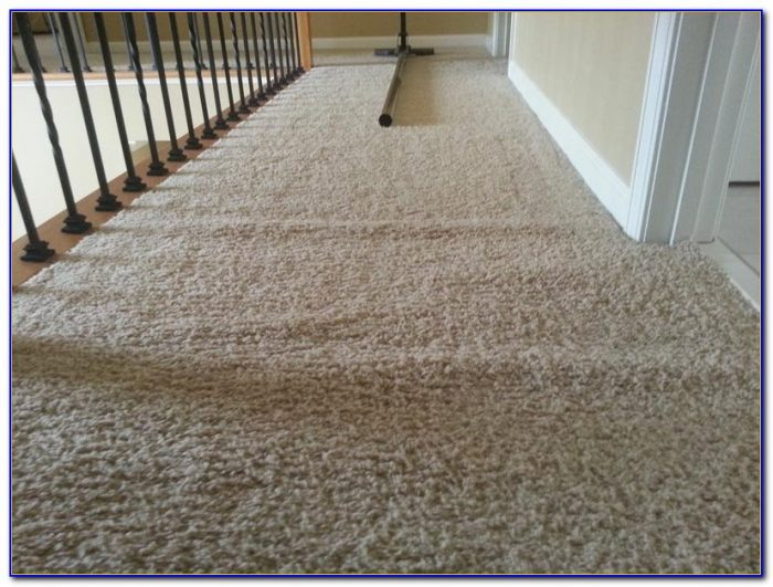 Carpet Cleaner For Hardwood Floors