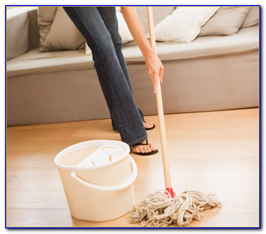 Dust Mop For Wood Floors