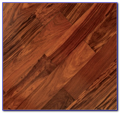 Hardwood Floors Dogs Can T Scratch Flooring Home