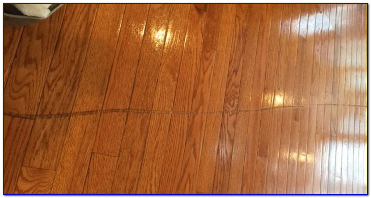 Scratches On Hardwood Floors From Dogs