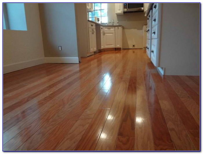 Steam Cleaner For Laminate Floors
