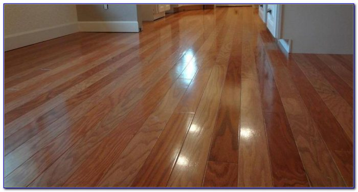 The Best Laminate Flooring For Dogs