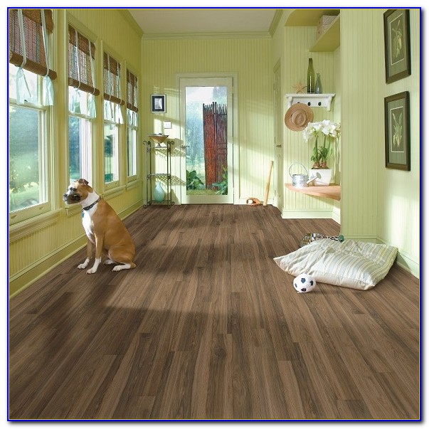 Armstrong Laminate Wood Flooring Cleaning