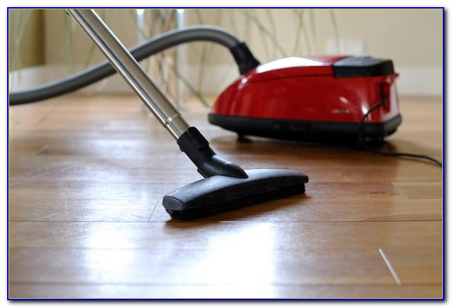 Best Lightweight Vacuum For Hardwood Floors And Pet Hair