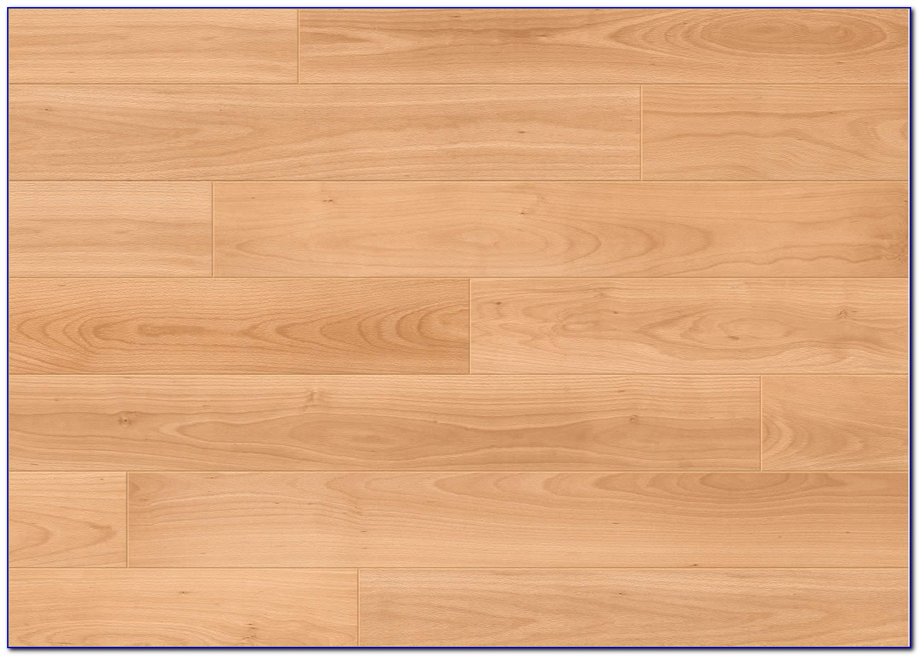 Best Mop For Laminate Floors Australia