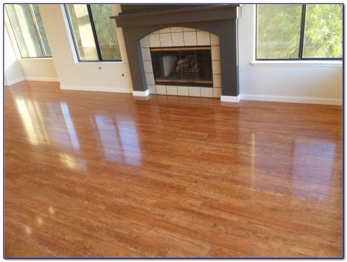 Best Steam Mop For Wood Laminate Floors