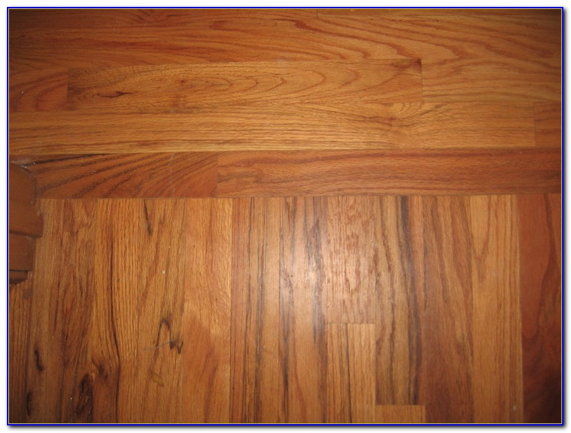 Floor Transition Strips Wood To Vinyl