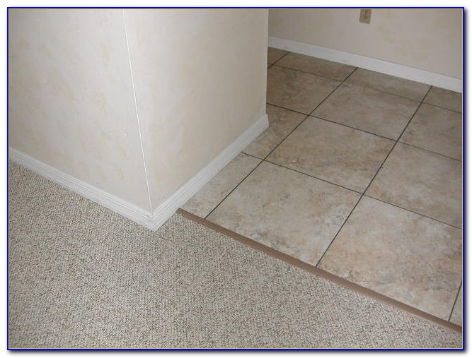 Tile To Carpet Wood Transition Strip