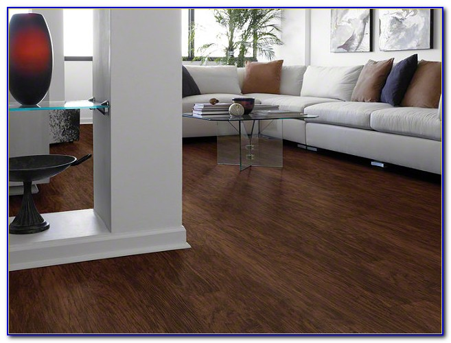 Shaw Vinyl Plank Flooring Adhesive
