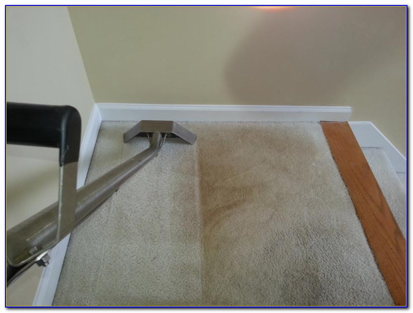 Steam Cleaner Hardwood Floors Safe