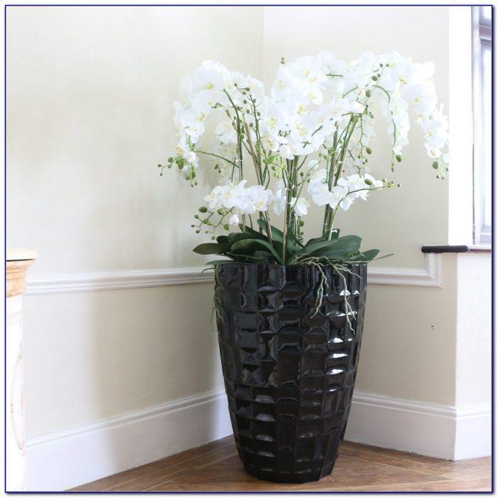 Tall Clear Glass Floor Vases