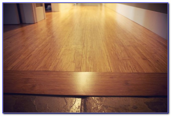 Transition Strips For Wood Floors