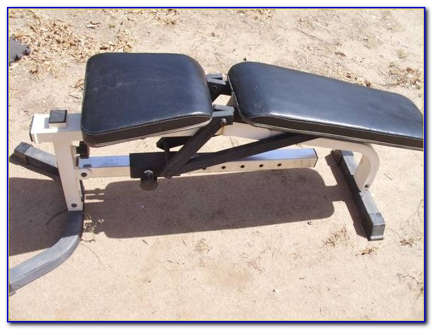Impex Powerhouse Fitness Weight Bench