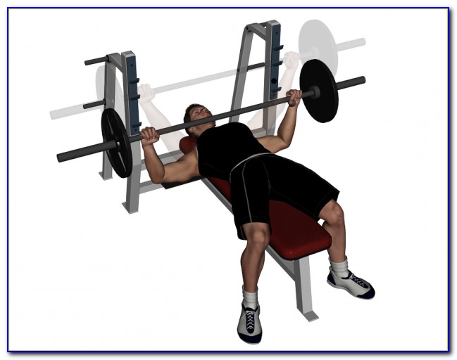Barbell For Bench Press