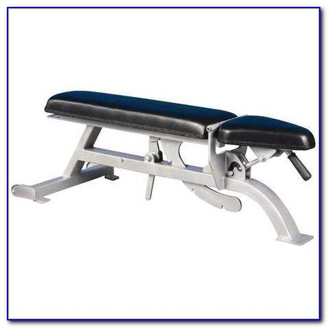 Best Multi Purpose Workout Bench
