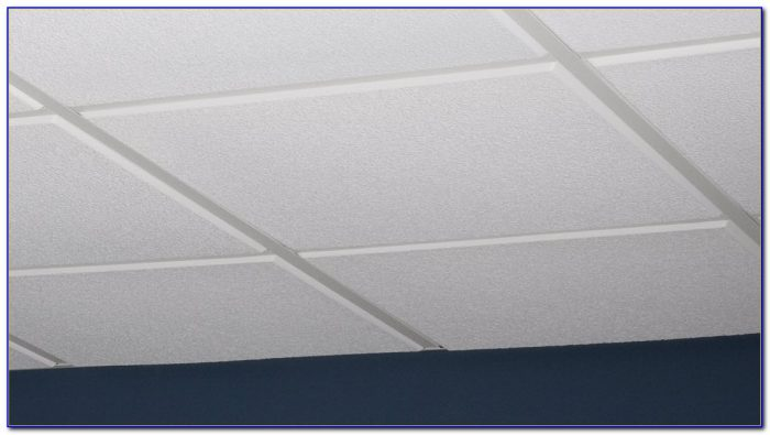 Armstrong Cleanroom Ceiling Tiles Ceiling Home Design Ideas - Armstrong cleanroom ceiling tiles