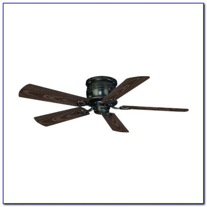 Ceiling Fans Flush Mount With Light
