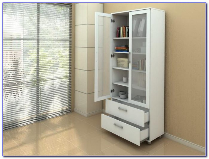 Contemporary Bookcase With Doors