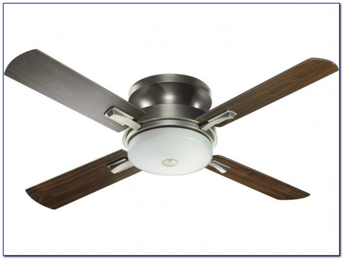 Hunter Ceiling Hugger Fans With Lights