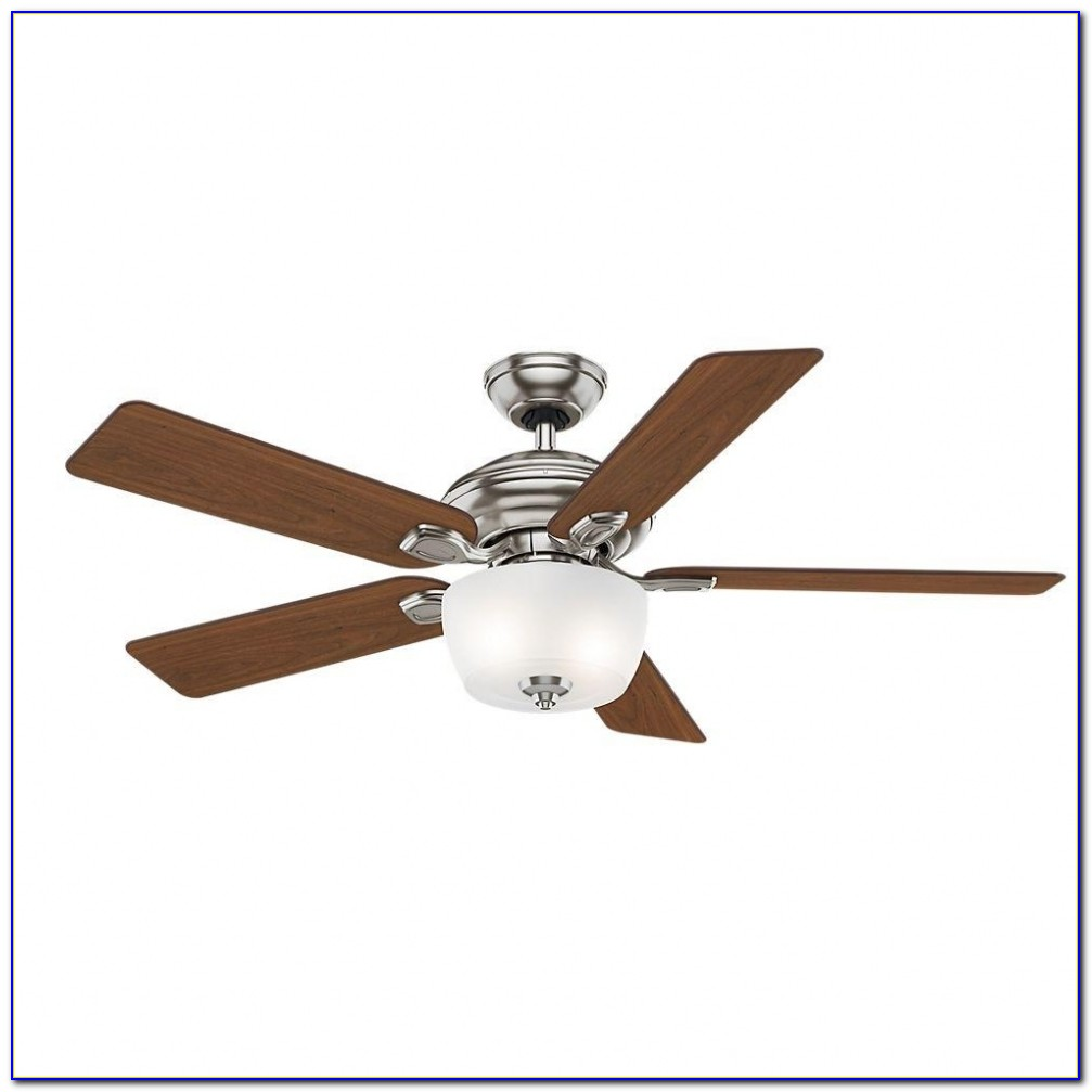 Hunter Contempo Ceiling Fan Costco Ceiling Home Design
