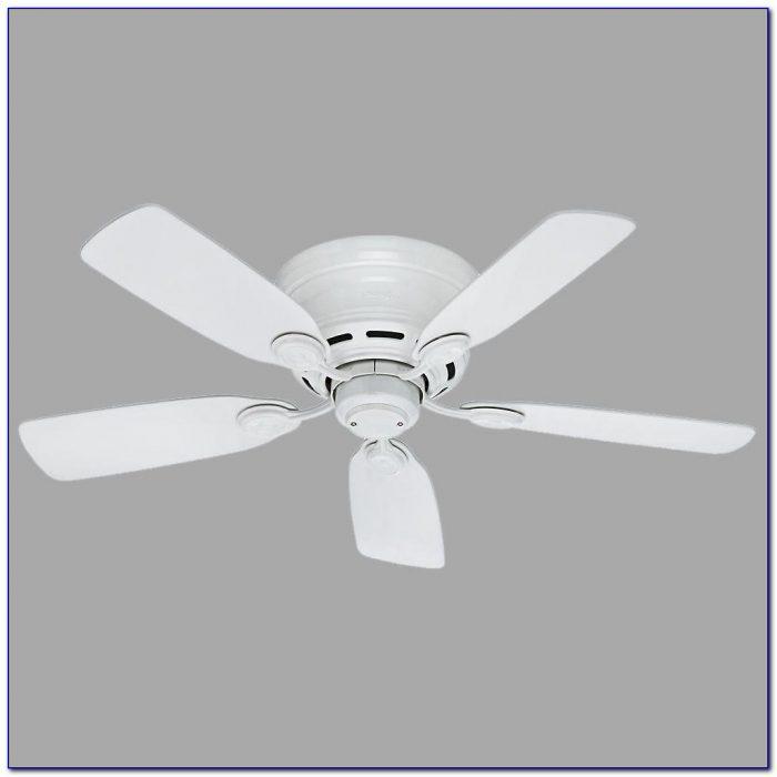 Hunter White Ceiling Fan Light Kit