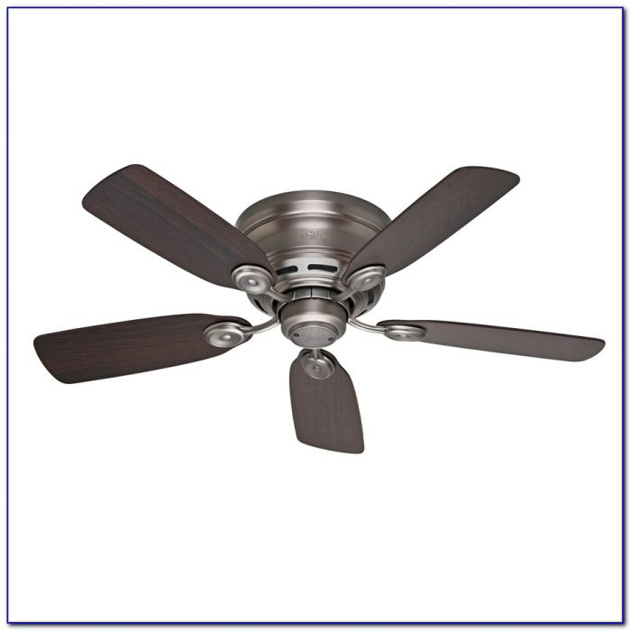 Hunter White Outdoor Ceiling Fan