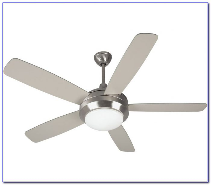 Stainless Steel Ceiling Fan With Light